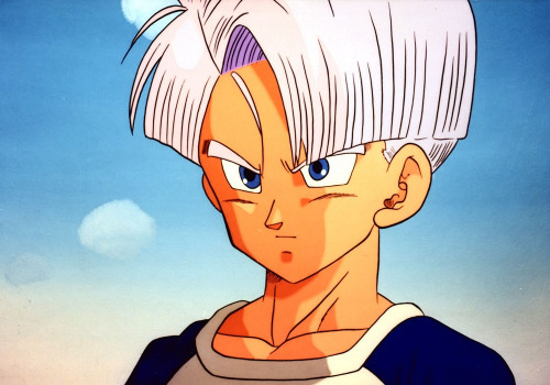 Future Vegeta Future Trunks (Dragon ...